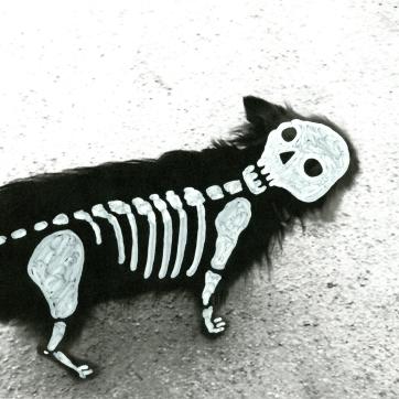"""""""La vida perra"""". Fotografía intervenida, A4."""