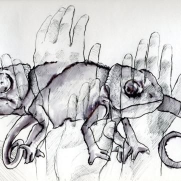 """""""Mimetismo"""", lápiz, tinta al agua y rotulación. 27x22 cm"""